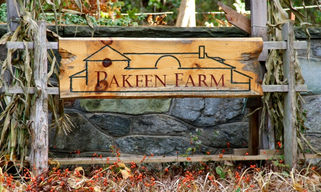 Pakeen Farm