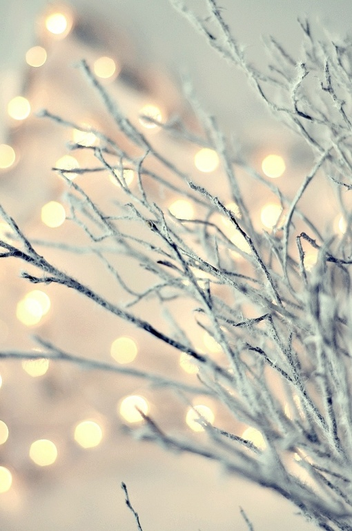 Twinkle Branches